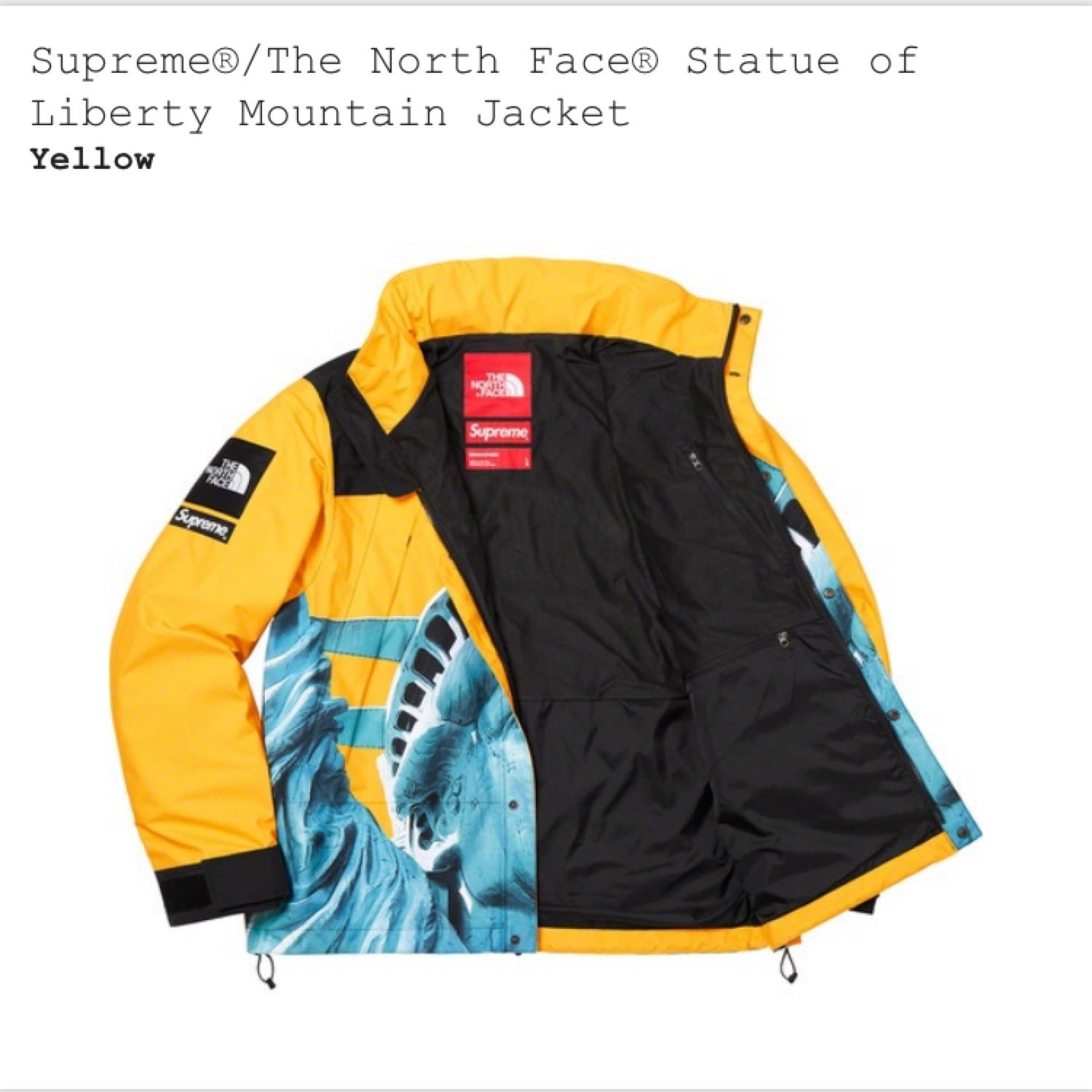 Supreme The North Face Statue Of Liberty Jacket