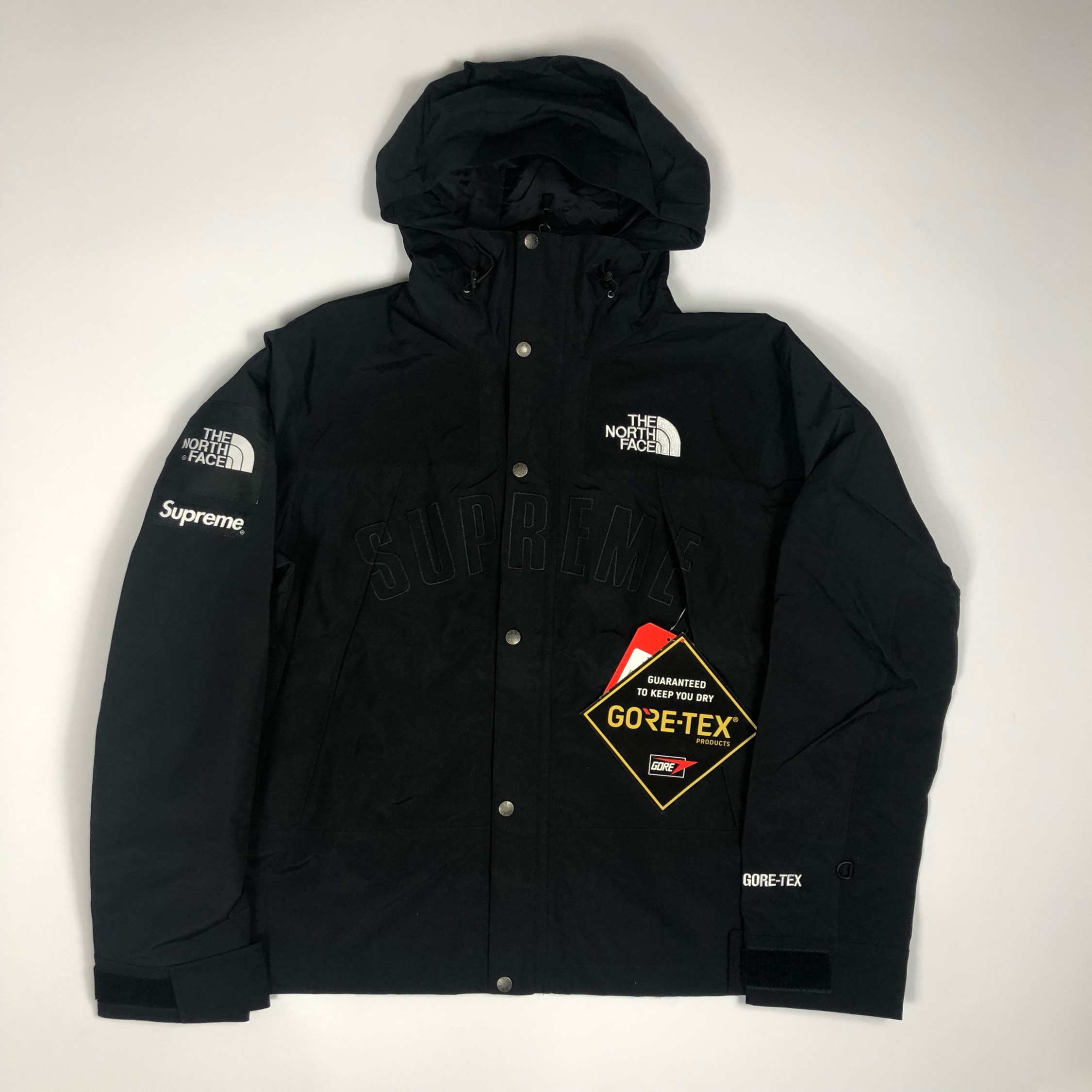 Supreme The North Face Arc Logo Mountain Jacket