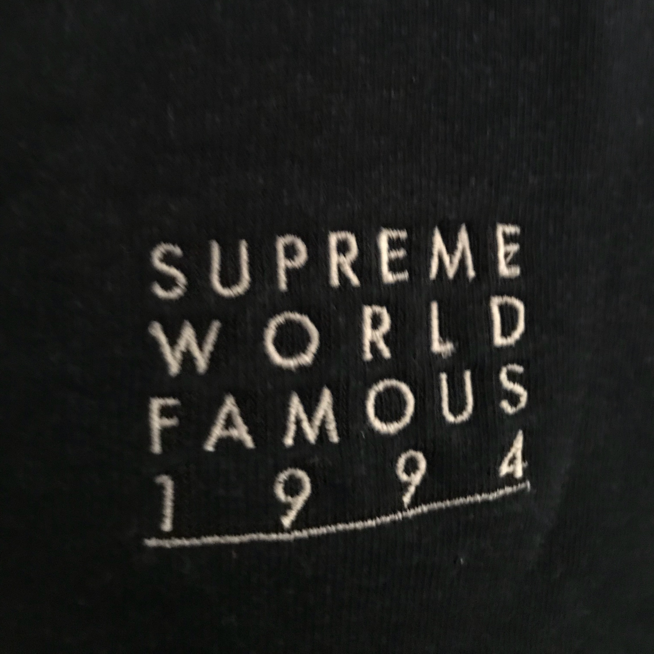 Ss18 Supreme World Famous Zip Up Hooded Sweatshirt