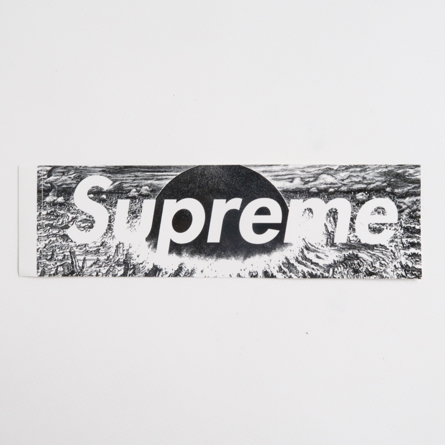 Supreme Akira Box Logo Sticker (Mint)
