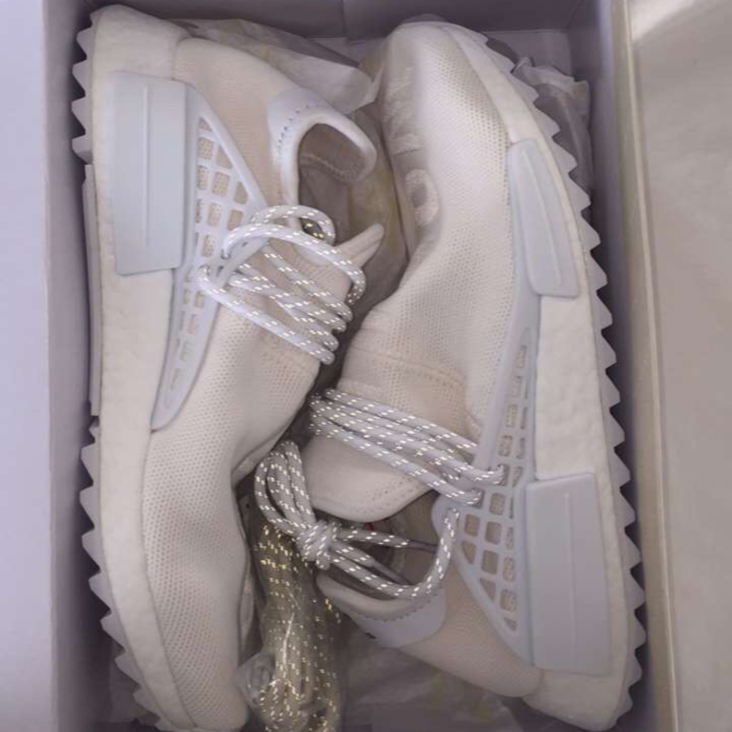 sports shoes 98295 86442 Human Race Blank Canvas