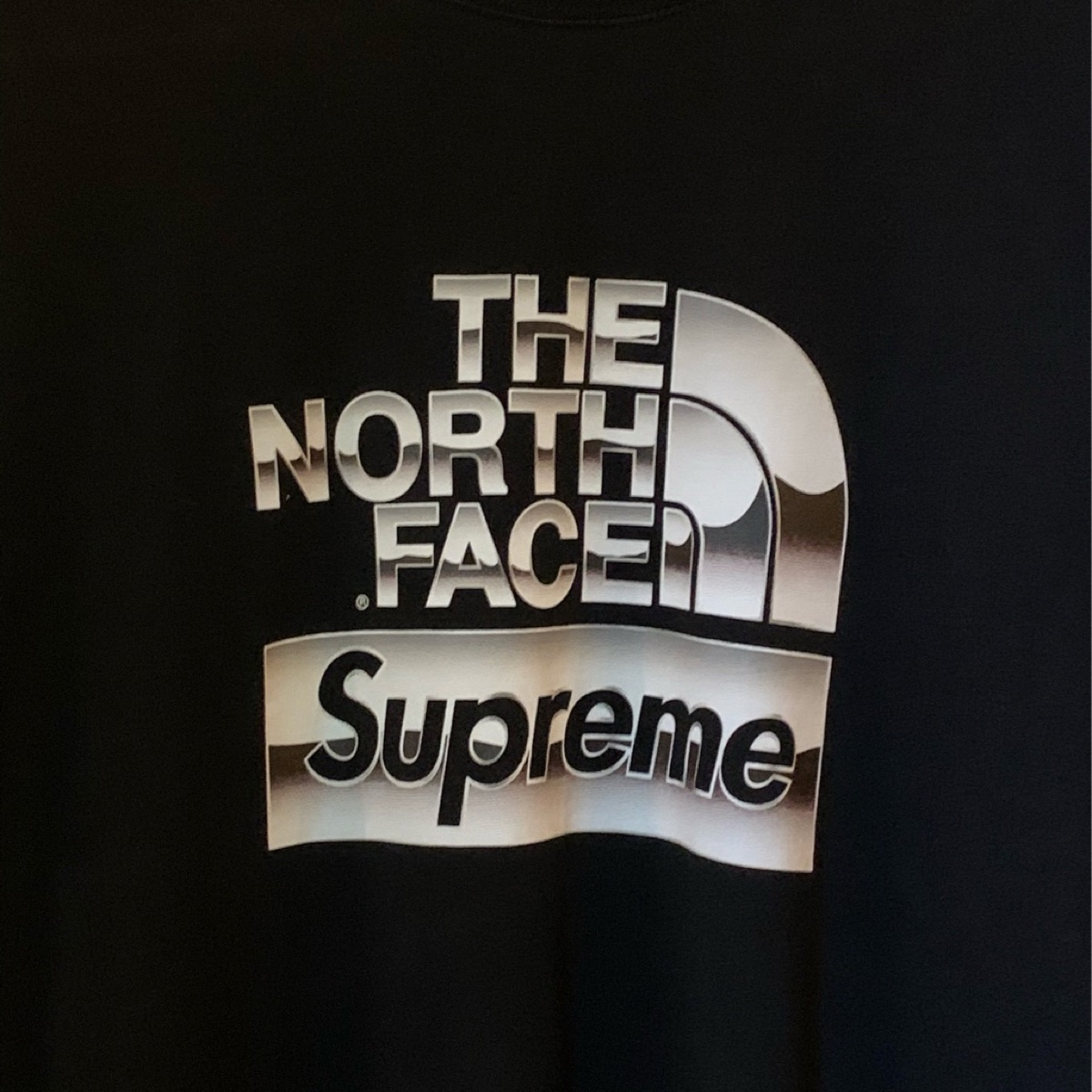 Supreme®/The North Face® Metallic Logo T-Shirt