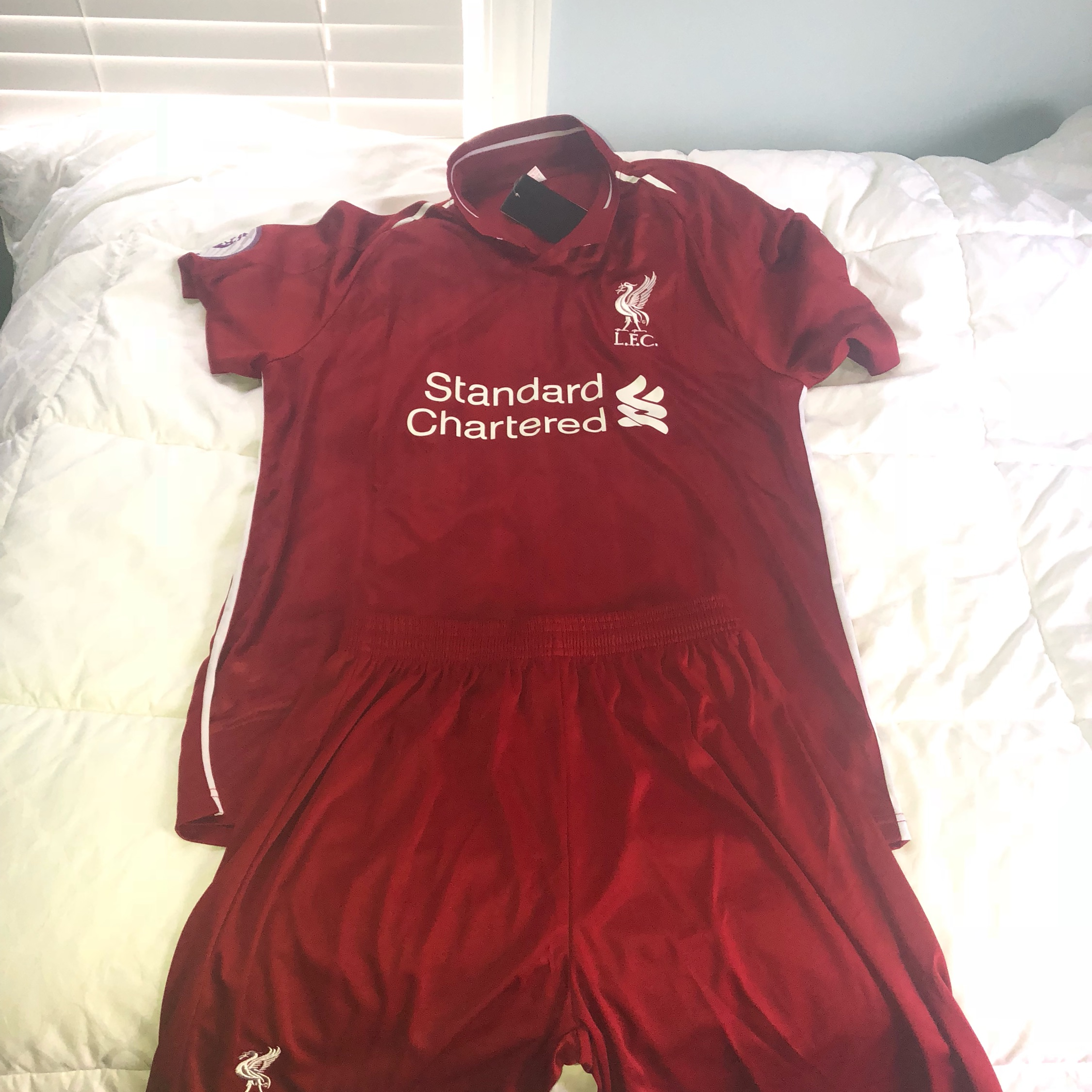 brand new 059a9 bd698 Liverpool 2019/2020 Jersey Kit