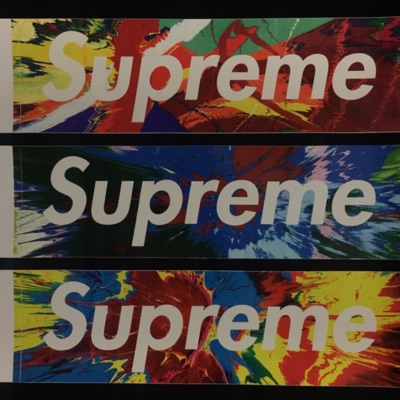 Supreme Fw09 Damien Hirst Box Logo Sticker Set