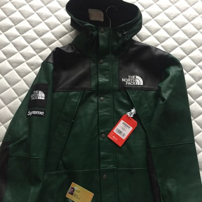 Supreme X The North Face Mountain Parka
