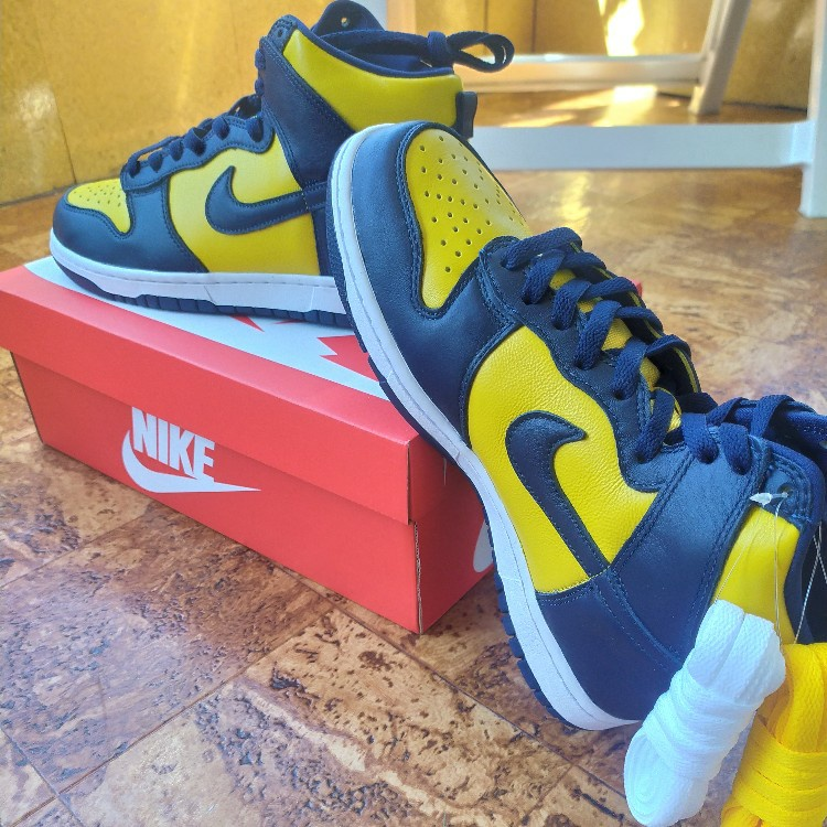 Nike Dunk High Michigan