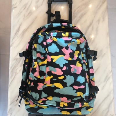 A Bathing Ape Bape Luggage/Bag Pack Cotton Candy