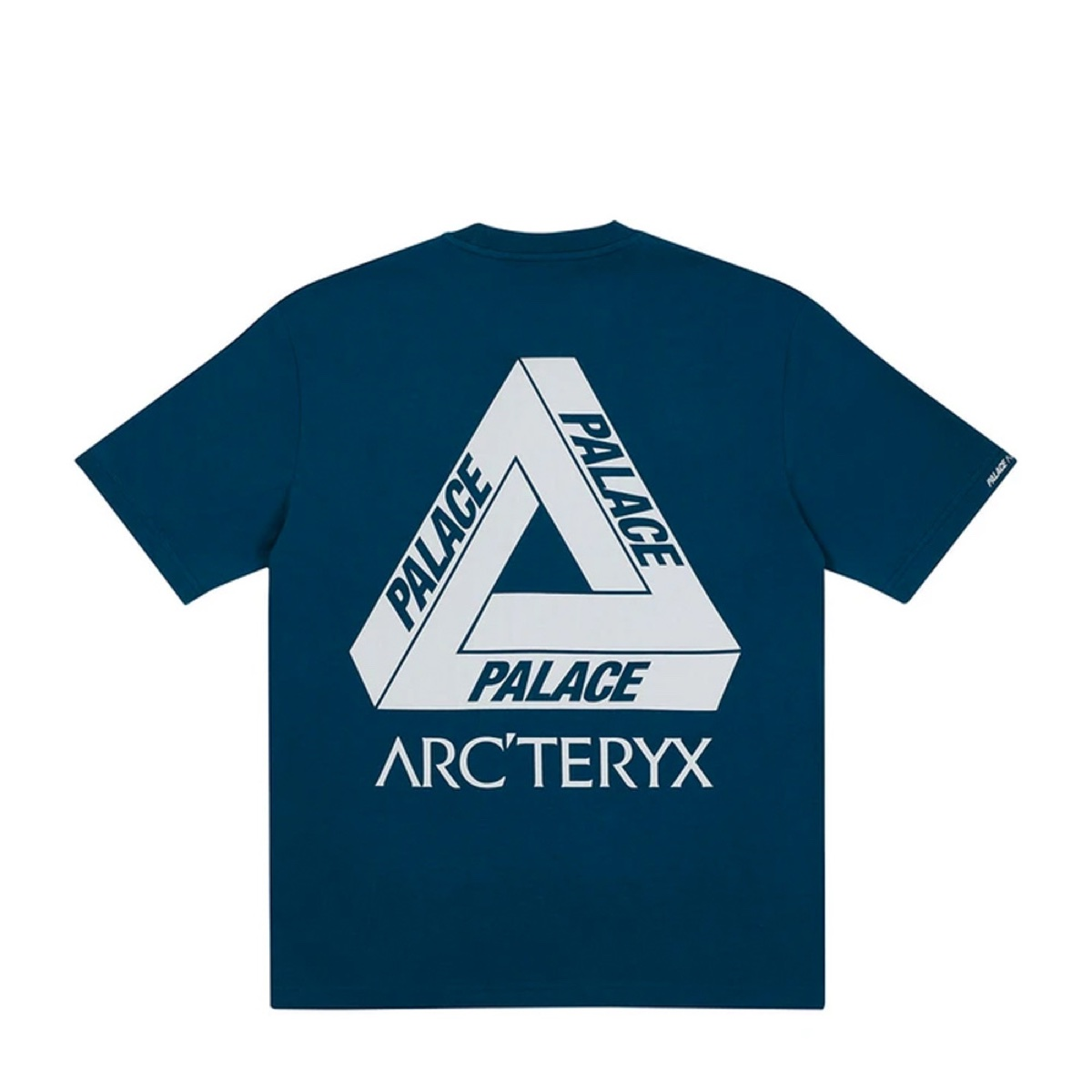 Palace X Arc'teryx T Shirt Teal