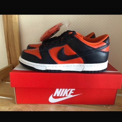 Nike Dunk Low SP Champ Colors