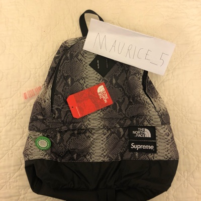 Supreme X The North Face Backpack Snakeskin