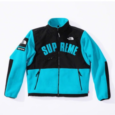 Supreme X The North Face Arc Logo Denali Fleece