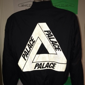 Palace 3M Reflective Triferg Thinsulate Bomber