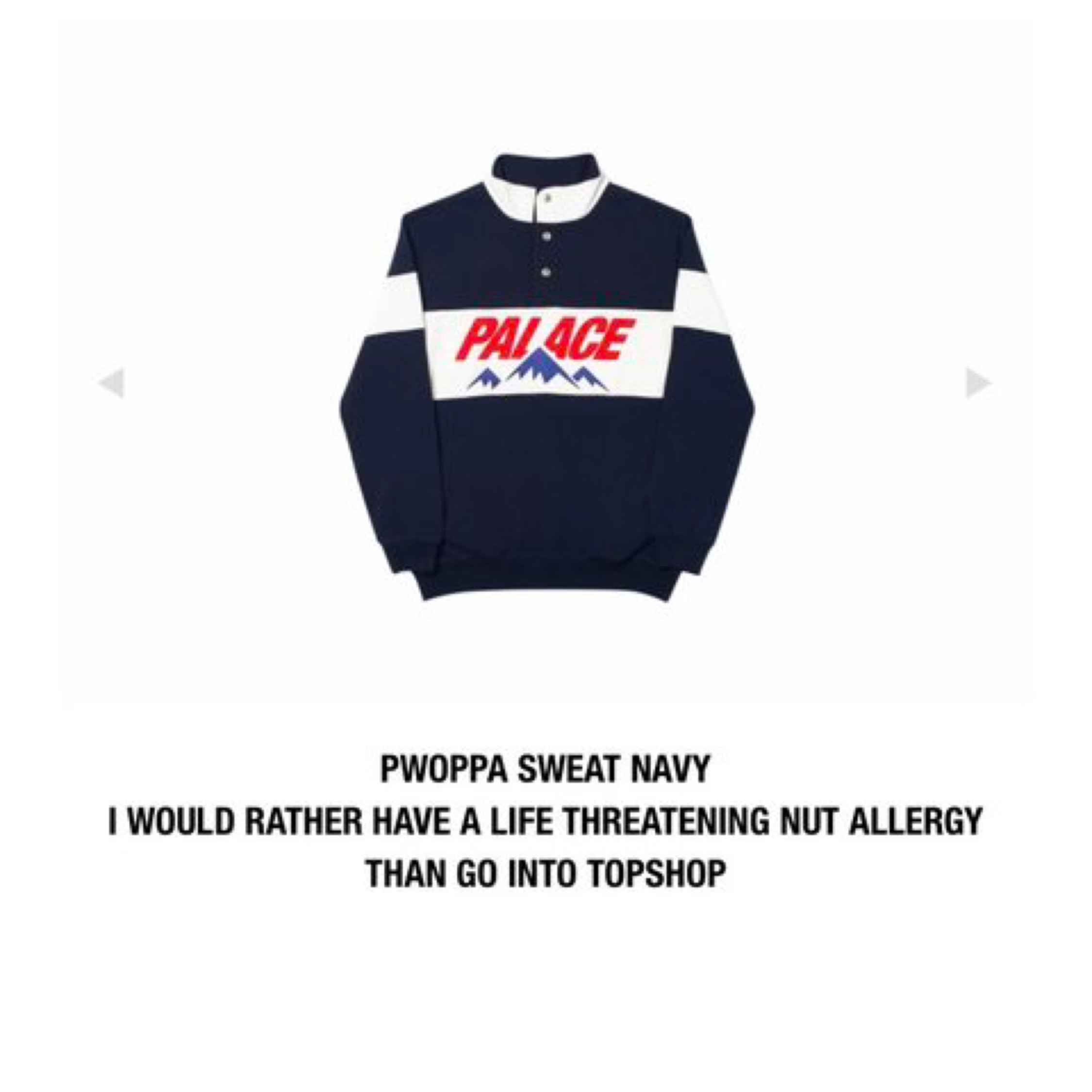 Palace Pwoppa Sweat