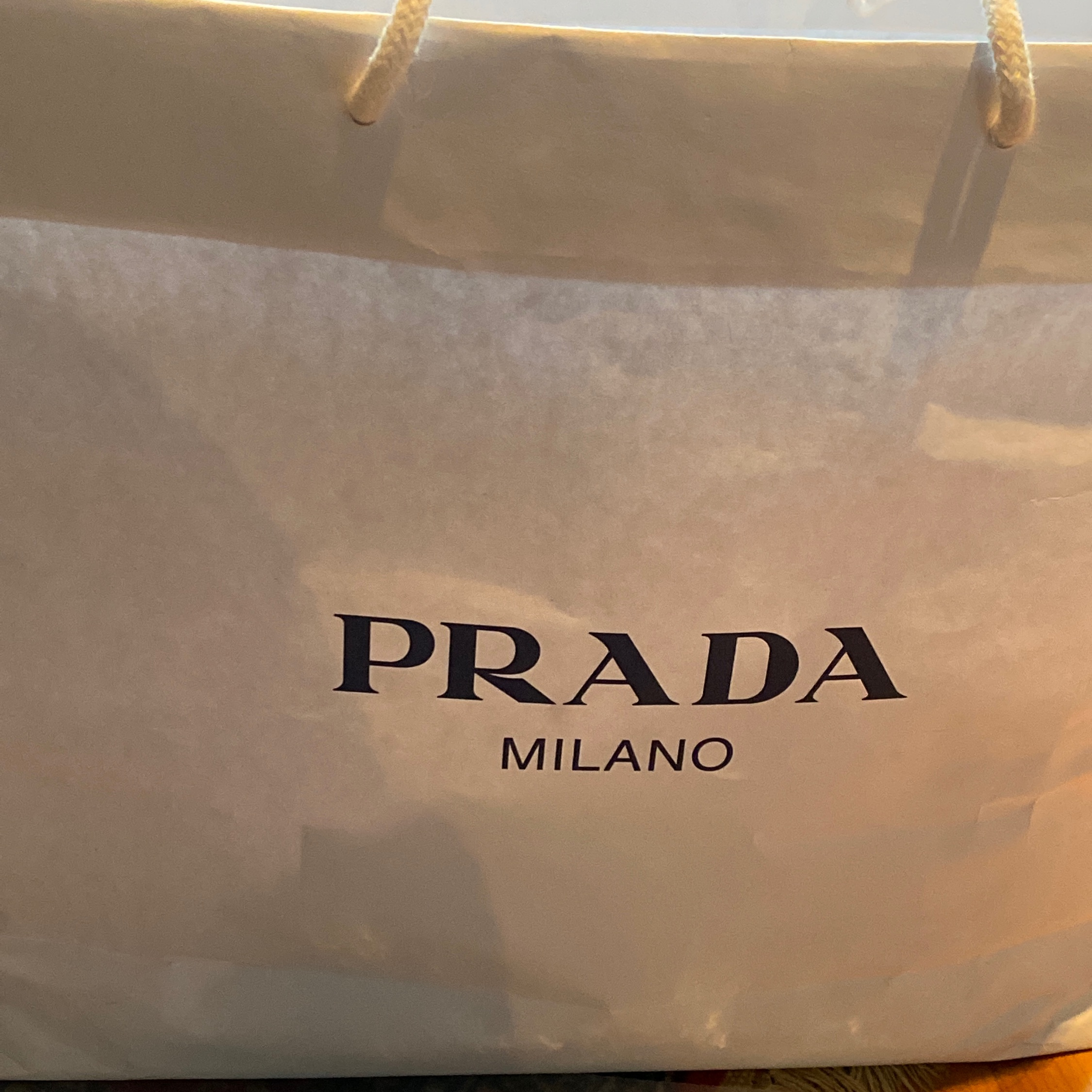 Prada Hooded Sweatshirt / Gilet 3M