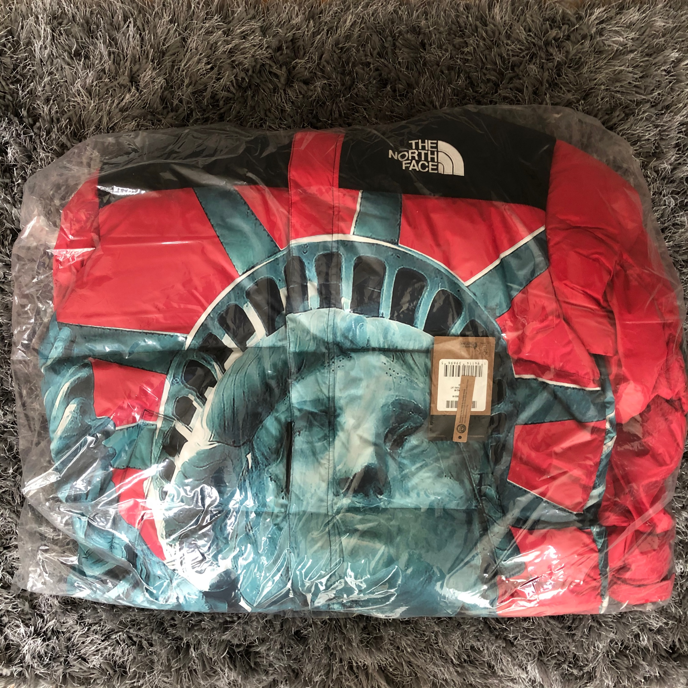 Supreme The North Face Statue of Liberty Baltoro Jacket Red
