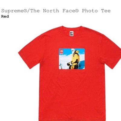 Supreme The North Face Photo Tee Red