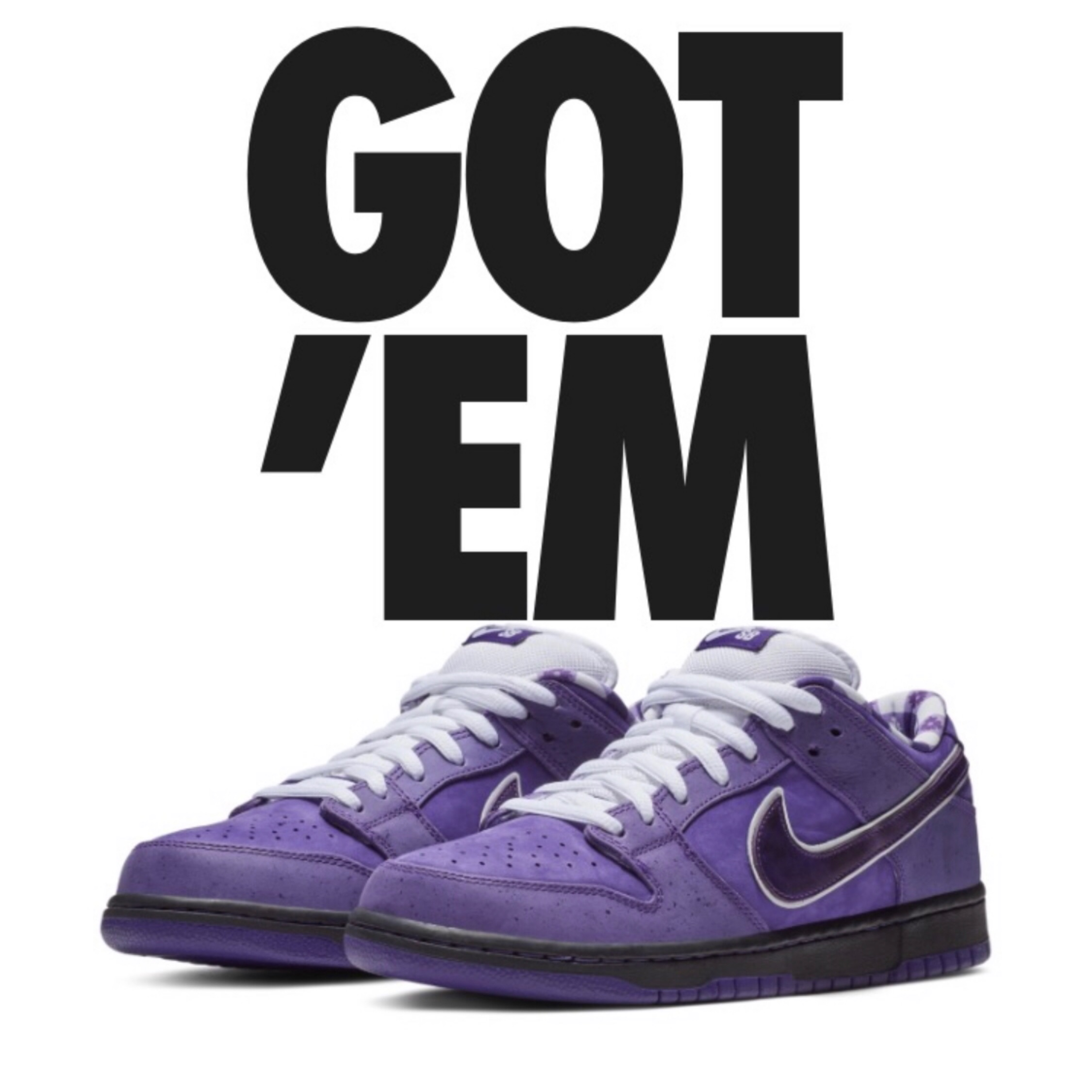 reputable site 9a376 7db32 Nike X Concepts Purple Lobster Sb Dunks Size 10