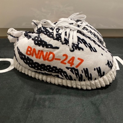 Yeezy Boost 350 V2 Zebra Indoor Slippers