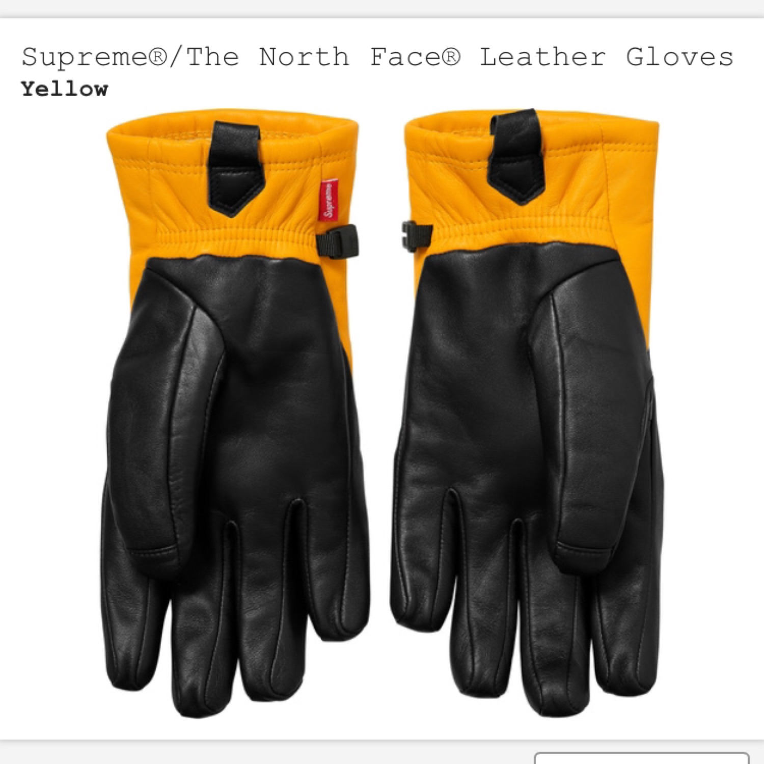 55a82324d Supreme X The North Face Leather Gloves