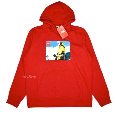 Supreme X Tnf Red Photo Logo Hoodie Ds