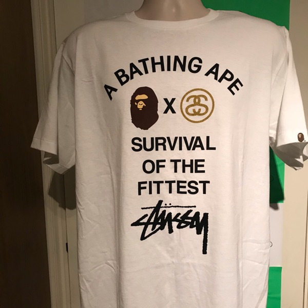 A Bathing Ape Stussy Survival Of The Fittest Tee