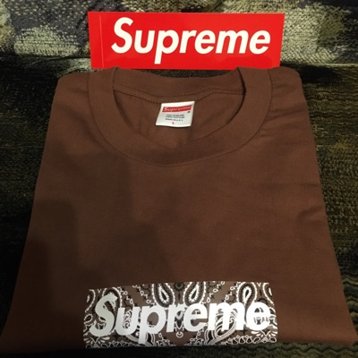 Supreme Bandana Box Logo Tee Brown