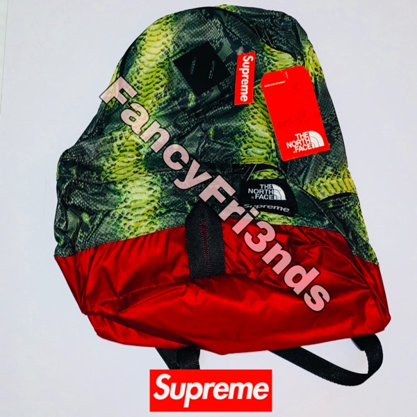 Supreme The North Face Snakeskin Pack Green