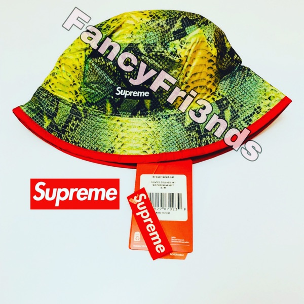 Supreme The North Face Snakeskin Crusher Green