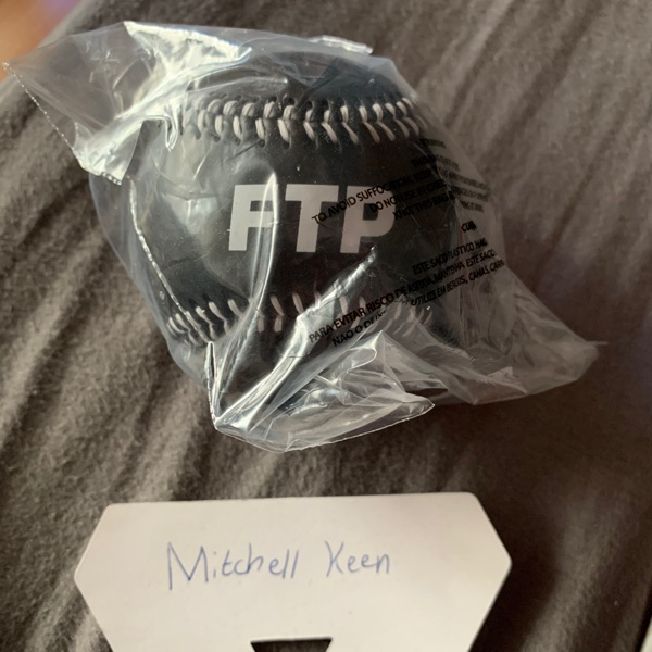 Ftp Baseball - Ds