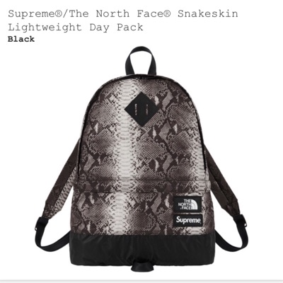 Supreme/The North Face Snakeskin Day Pack
