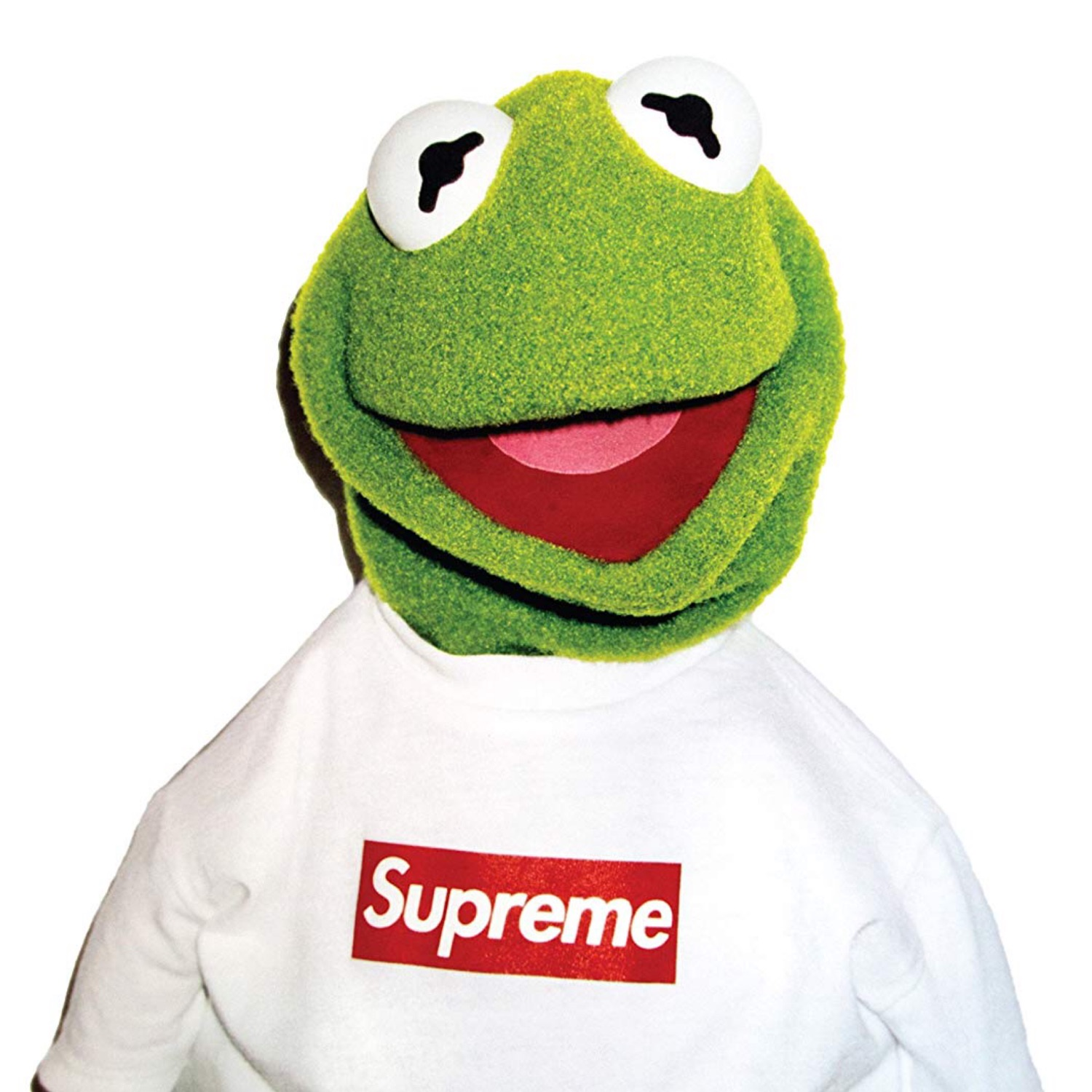 Supreme Poster Kermit The Frog DS