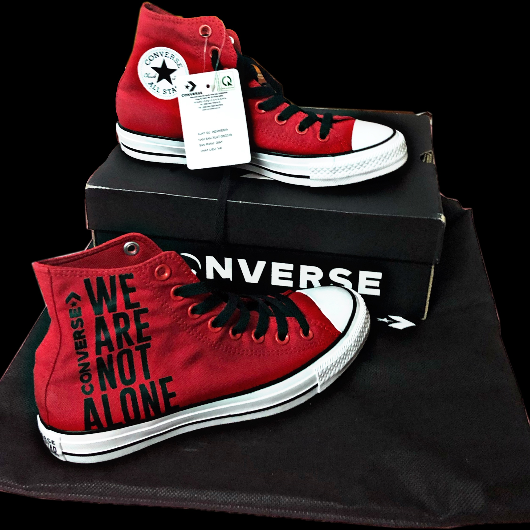 Converse Chuck Taylor All Star We Are Not Alone