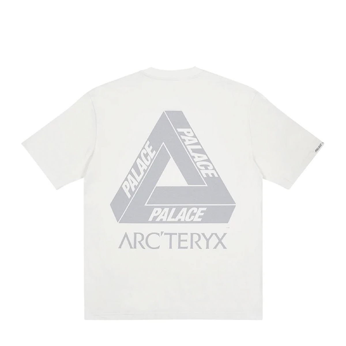 Palace X Arc'teryx T Shirt White