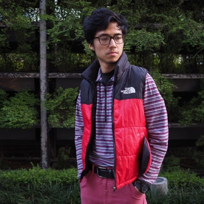 The North Face Tnf Red Black Down Gilet Vest