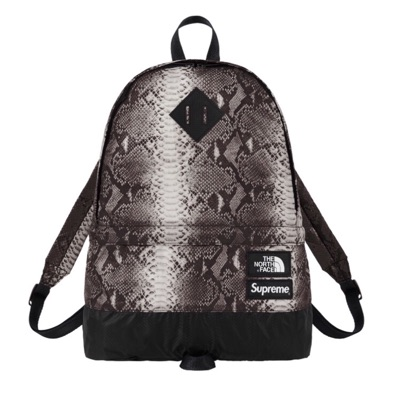 Supreme X The North Face Snakeskin Day Pack