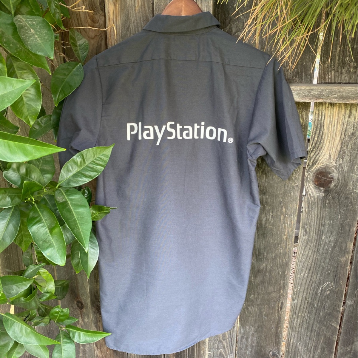 Sony PlayStation spellout burton up