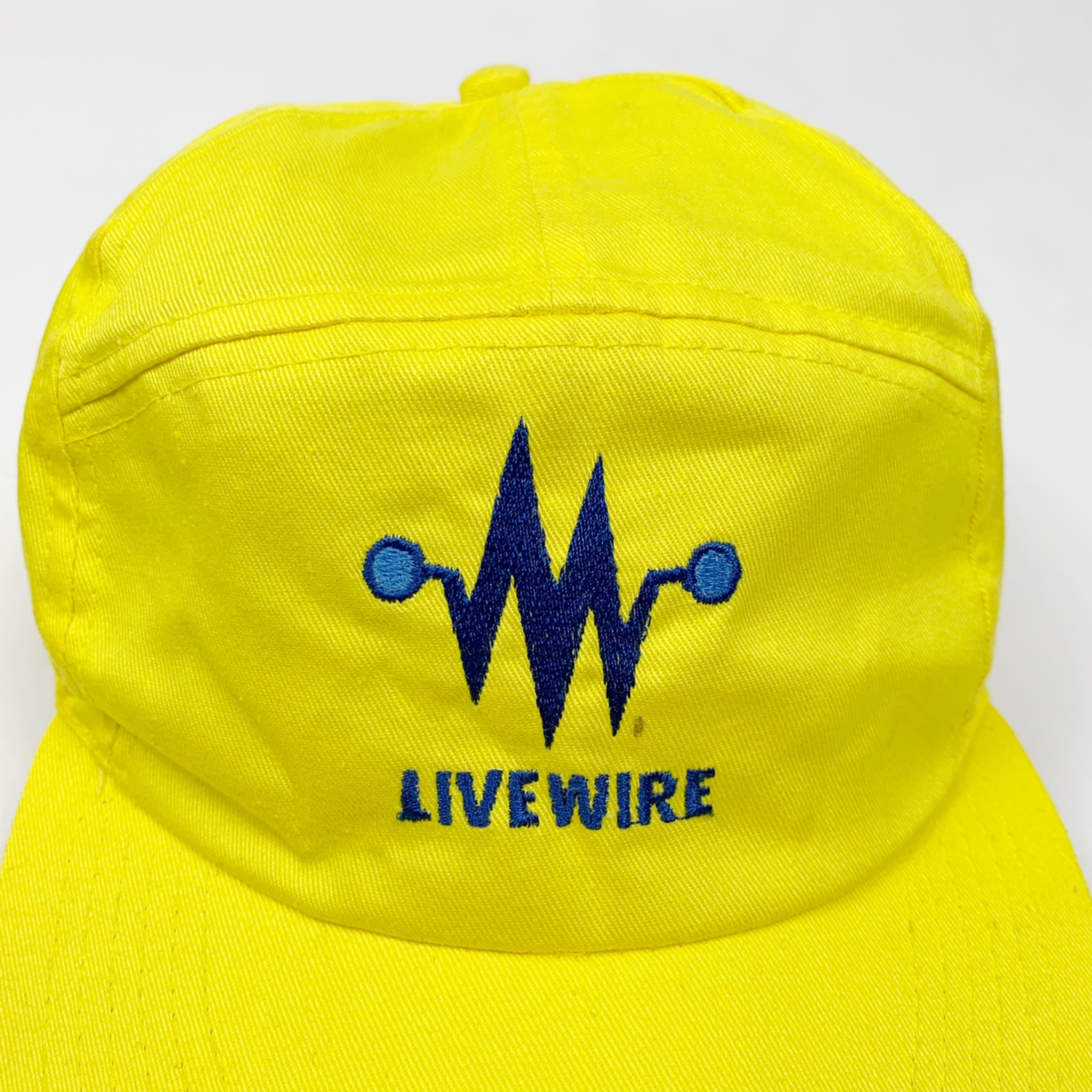 Vintage Embroidered Livewire Trucker Hat