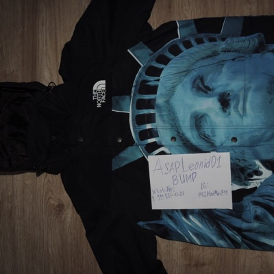 The North Face X Supreme Statue Of Liberty Jacket