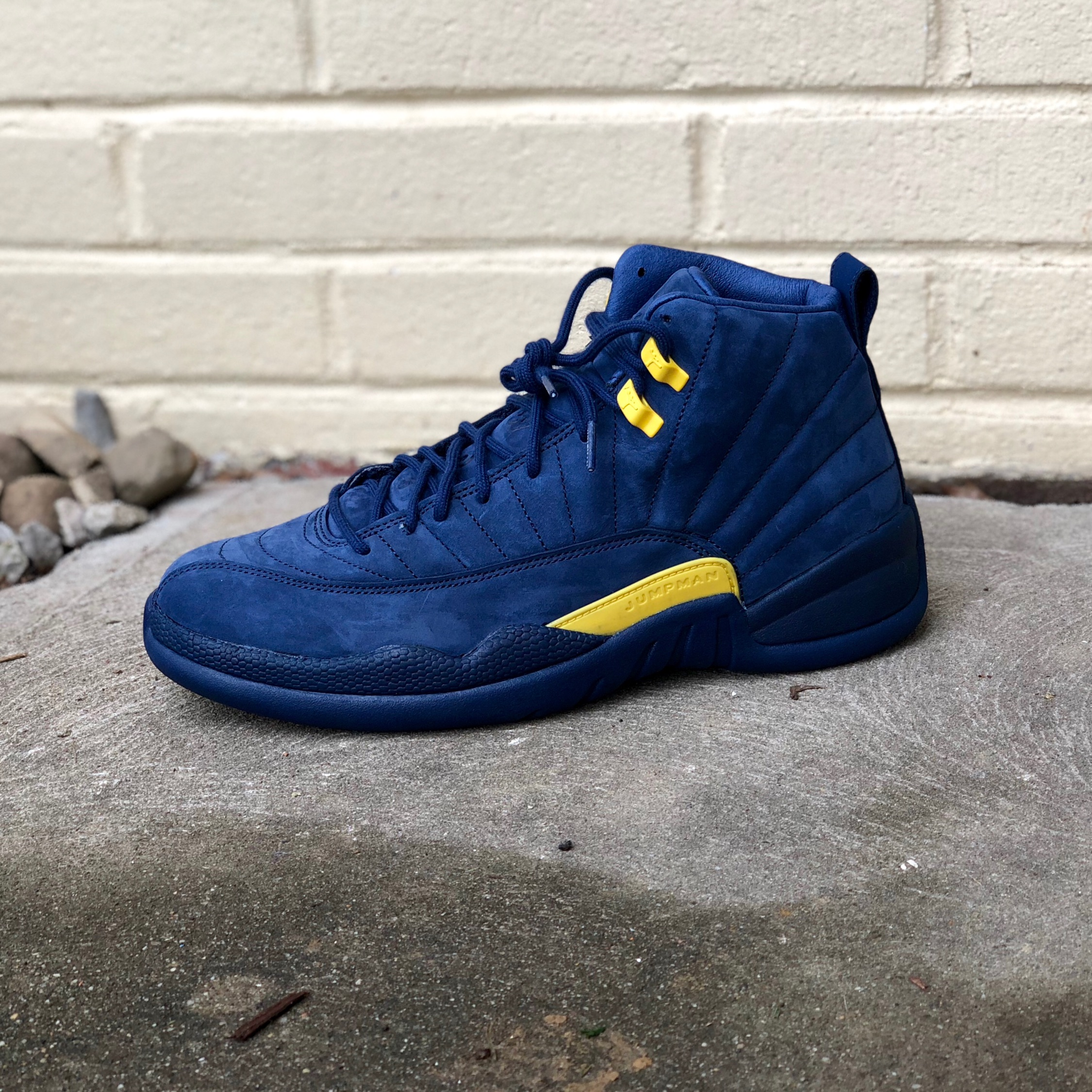 "brand new ecef3 4d28d Air Jordan Retro 12 ""Michigan"" Ds Size 10.5"