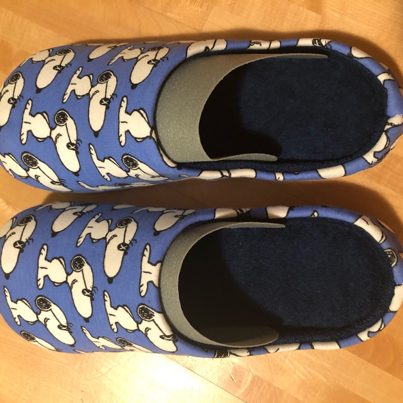 KAWS x Uniqlo x Peanuts Snoopy Room Shoes Light Blue