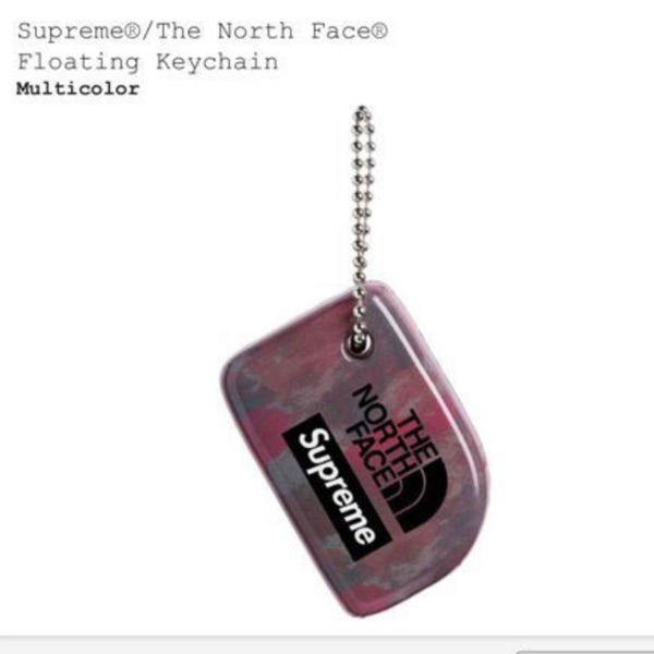 Supreme North Face Floating Keychain