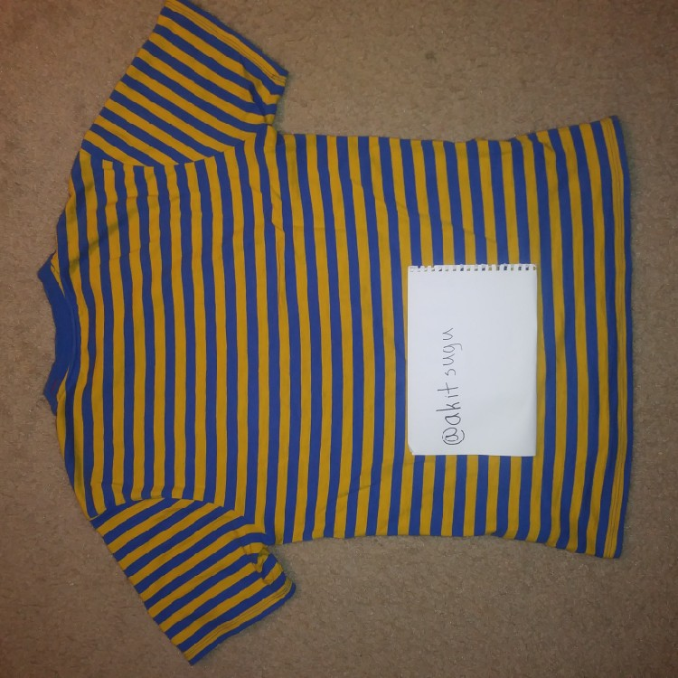 GUESS X A$AP ROCKY STRIPED TEE(Blue And Yellow)